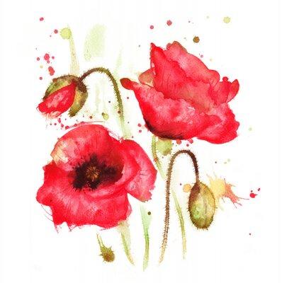Canvas print 211015