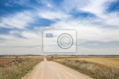 a country road and wind facility on a summer day and a blue sky