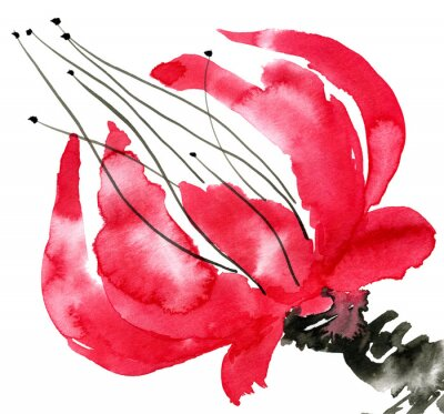 Canvas print Abstract red flower. Drawing  poppy.  Watercolor and ink illustration in style sumi-e, u-sin. Oriental traditional painting.  Isolated on white background.