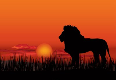 Canvas print African landscape with animal lion silhouette. Savanna sunset  background