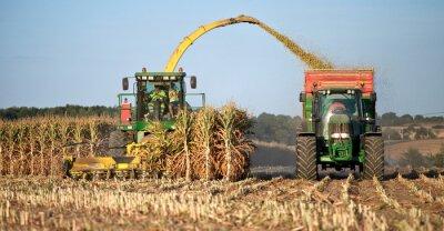 Canvas print Agriculture en France