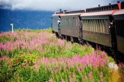 Canvas print Alaskan Trains