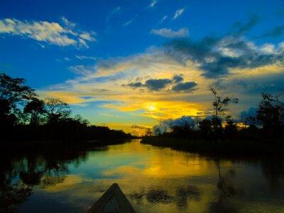 Canvas print Amazon river