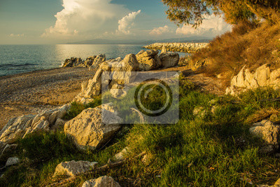 atmospheric Indian ocean waterfront with stones rock sand and grass landscape photography in colorful summer sunset evening time