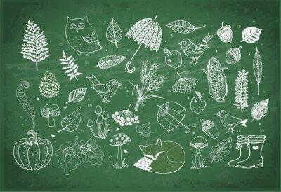 Autumn doodle collection. Fall illustration. Set of autumn design elements. Umbrellas, leaves, mushrooms, forest animals.
