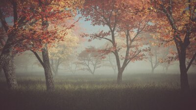 Canvas print Autumn forest in the mist.