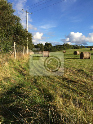 Autumn rural landscape with hay bales and blue sky