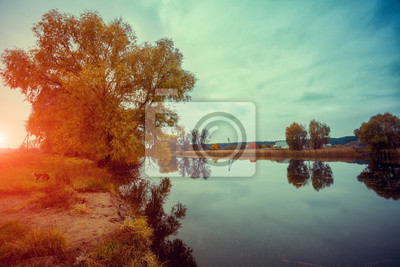 Autumn rural landscape with lake at sunrise