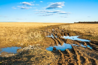 autumn rural landscape with the dirty road