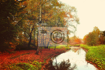 Autumn rural landscape with trees near the river