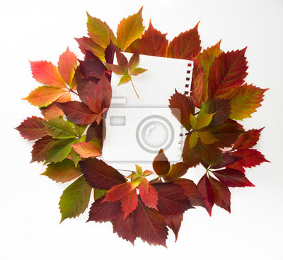 Autumn time: red vine leaves and paper text