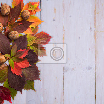 Autumn time: red vine leaves and walnuts