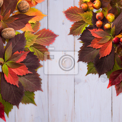 Autumn time: red vine leaves and walnuts, wild apple.