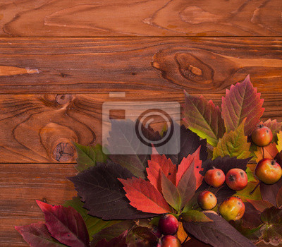 Autumn time: red vine leaves and wild apple.