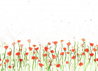 Canvas print Background with hand drawing watercolor red poppies on white. Seamless banner with flowers. Hand painting color copy space border.