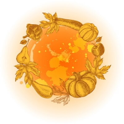 Background with Ink hand drawn pumpkins, pears, zucchini, apples and maple leaves . Autumn harvest elements composition. Vector illustration.