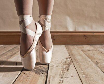 Canvas print Ballet Shoes on Wooden Floor