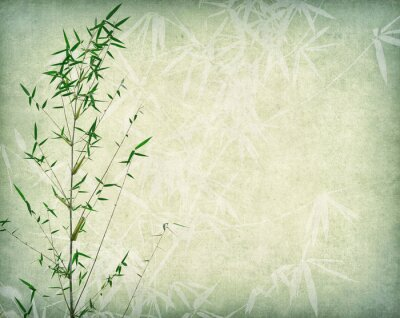 Canvas print bamboo on old paper background