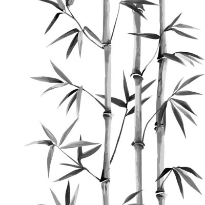 Canvas print Bamboo Seamless Vertical Border on white background
