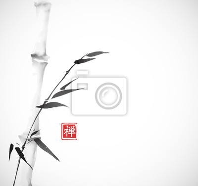 Bamboo tree hand drawn with ink in minimalist style on white background. Traditional oriental ink painting sumi-e, u-sin, go-hua. Hieroglyph - zen.