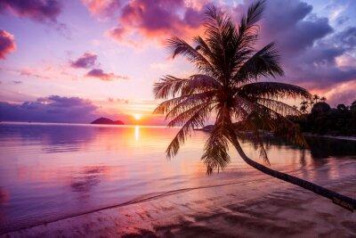 Canvas print Beautiful bright sunset on a tropical paradise beach