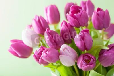 Canvas print beautiful purple tulip flowers background