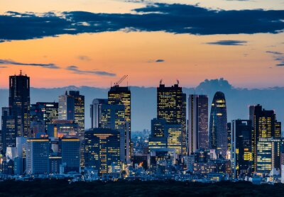 Canvas print Beautiful Silhouette of Tokyo Skyline at Twilight
