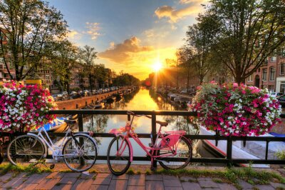 Canvas print Beautiful sunrise over Amsterdam, The Netherlands, with flowers and bicycles on the bridge in spring