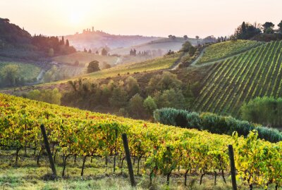 Canvas print Beautiful valley in Tuscany, Italy. Vineyards and landscape with San Gimignano town at the background.