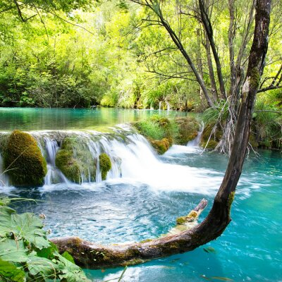 beautiful waterfals of Plitvice lake