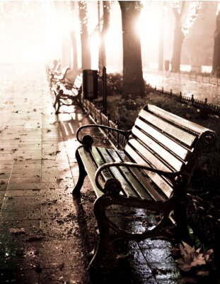 Canvas print Bench in night alley with lights in Odessa,