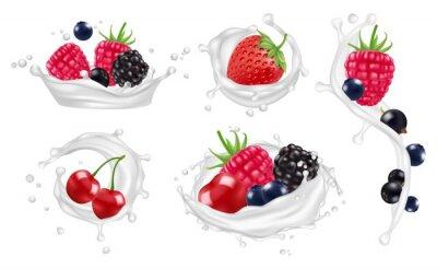 Berries milk splashes vector set. Strawberry, raspberry, blueberry fruits and yogurt splashes isolated vector illustrations on white