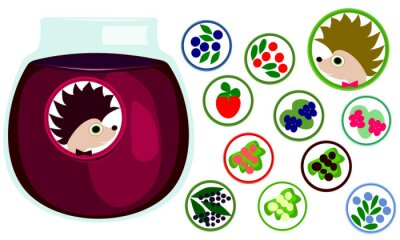 Berries stickers collection. Hedgehog with bow tie, label. Icons of strawberry, raspberry, blackberry, blueberry, cranberry, black, red, white currant, honeysuckle, elderberry. Jar with jelly.