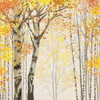 Canvas print Birch grove in autumn time