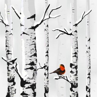 Canvas print Birch in snow, winter card in vector