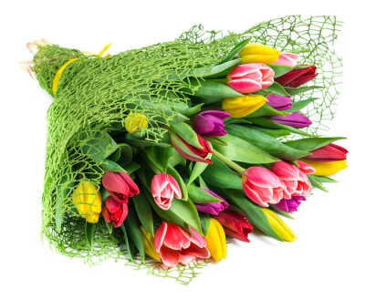 Canvas print bouquet of 25 colorful tulips, isolated on white background