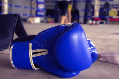 Canvas print Boxing Glove Blue