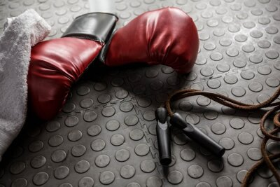 Canvas print Boxing gloves and rope