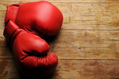 Canvas print Boxing gloves ¿En serio?