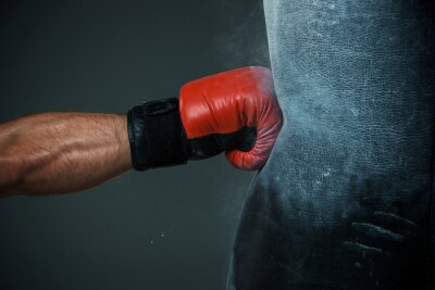 Canvas print Boxing training and Punching bag