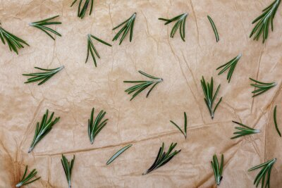 Branches and leaves of rosemary as a background (spices collection). On rustic background.
