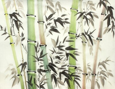 Canvas print bright bamboo forest
