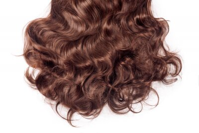 Canvas print Brown hair texture. Wavy long curly light brown hair close up isolated on white. Hair extensions, materials and cosmetics, hair care, wig. Hairstyle, haircut or dying in salon
