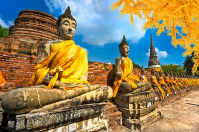 Canvas print Buddha Statues in Ayutthaya, Thailand,