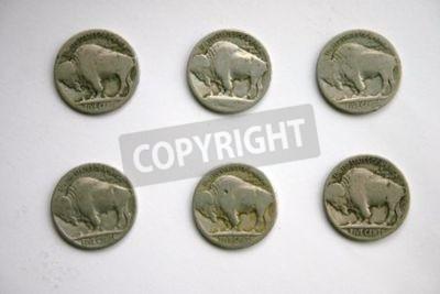 Buffalo Head Nickels against white BG