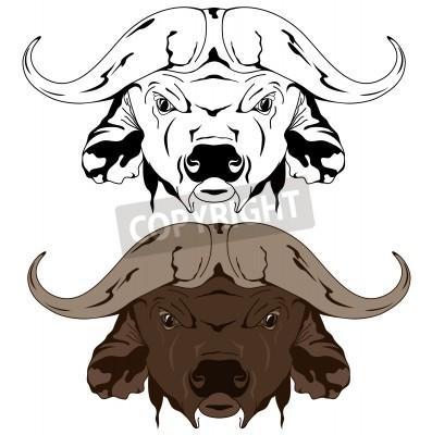 buffalo head vector illustration