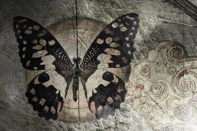 Canvas print butterfly