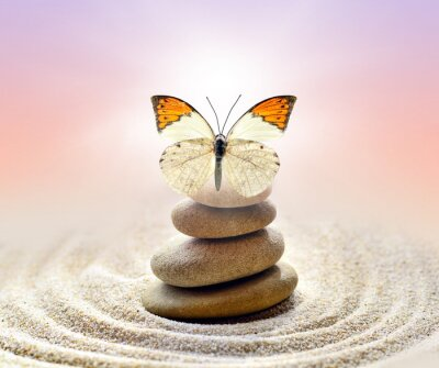 Canvas print Butterfly and stones balance