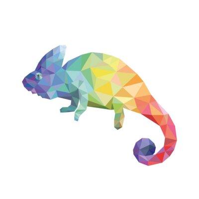 Canvas print Chameleon color