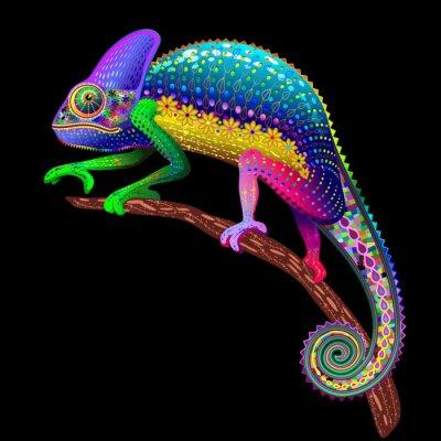 Canvas print Chameleon Fantasy Rainbow Colors